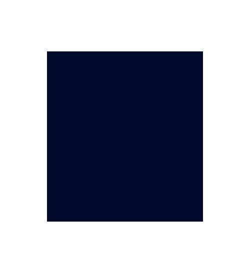 Digital Barriers Logo